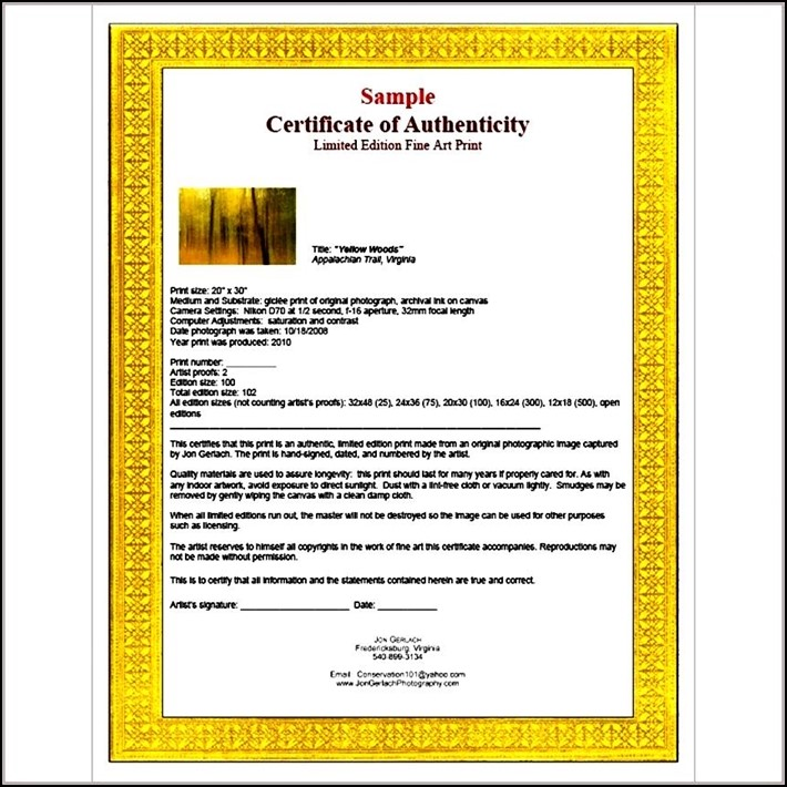 artist certificate of authenticity template sample templates