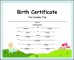 Birth Certificate Template PDF