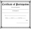Certificate of Participation PDF