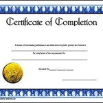 Course Completion Certificate Template Sample