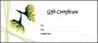 Free Gift Certificate Template Mac