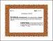 Microsoft Award Certificate Template