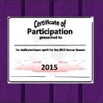 Participation Certificate Template Sample