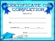 Practical Completion Certificate Template