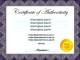 Printable Certificate of Authenticity Template