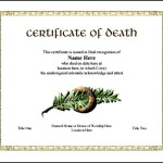 Printable Death Certificate Template