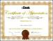 Professional Certificate Psd