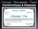 Professional Certificate Sample