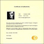 Sample Certificate of Authenticity Template