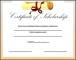 Sample Scholarship Certificate