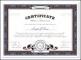 Stock Certificate Template Download