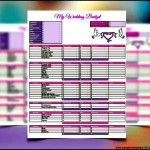 Download Wedding Budget Excel Template Example