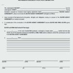 Buyer Agency Agreement Template