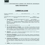 Commercial Lease Agreement Form in PDF