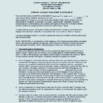 Company Agency Non-Compete Agreement Template