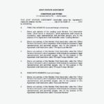 Conditions & Terms of Joint Venture Agreement Template