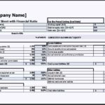 Balance Sheet with Financial Ratio Template Excel