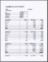Excel Cashier Balance Sheet Template