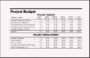 Sample Project Budget Template Excel