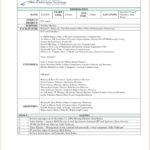 Meeting Minutes Template Excel Format